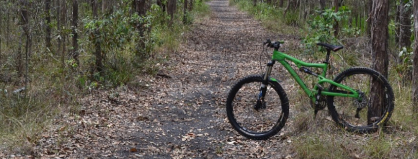 bike on path in the bush